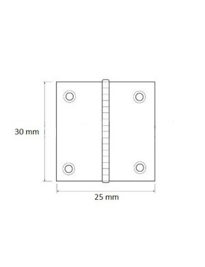 Cerniera a libro in acciaio INOX mm 25 x 30