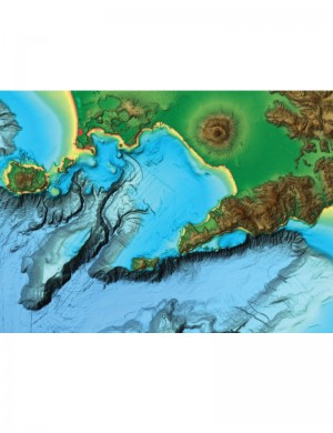 C MAP Reveal M EW Y228 MS