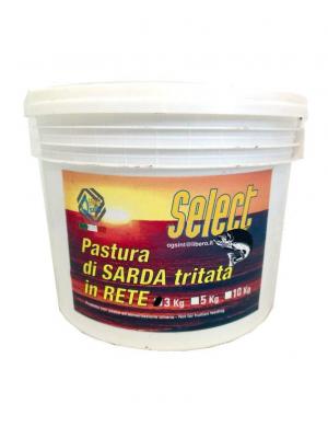 Select Sarda tritata in rete